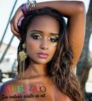 Aline Prado Ex-Globeleza nua, pelada na Playboy de fevereiro de 2014 BlogDoBasilio (3)